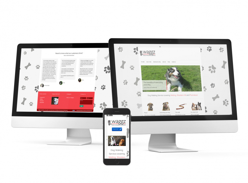 Dog Walking Website build